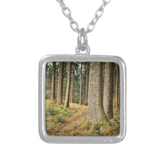 Un bosque grimpolas personalizadas