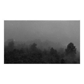 Un bosque de niebla