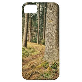 Un bosque iPhone 5 carcasas