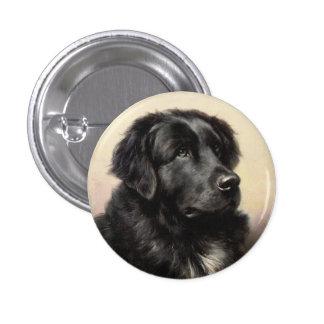 Un botón de Terranova Pin