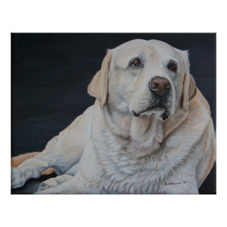 Un buen perro posters
