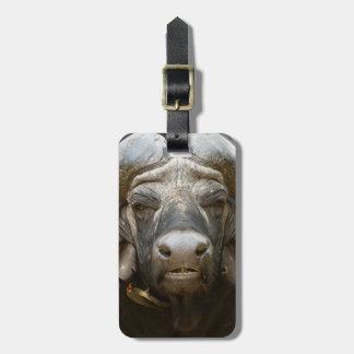 Un búfalo del cabo (Syncerus Caffer) Etiquetas Para Maletas