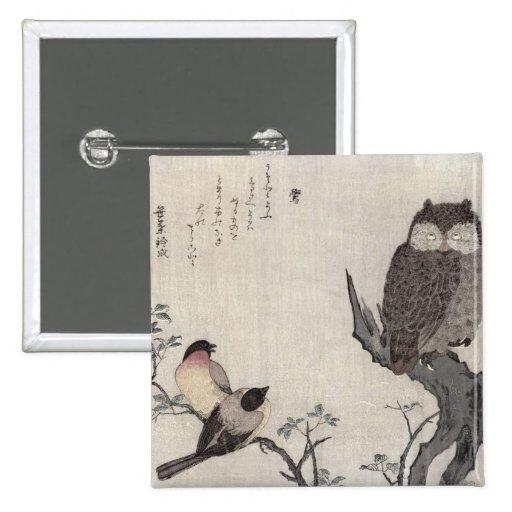 Un búho y dos Bullfinches del este Pins