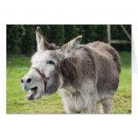Un burro tarjetón