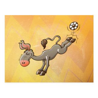 Un burro tiene el retroceso más potente del fútbol tarjeta postal