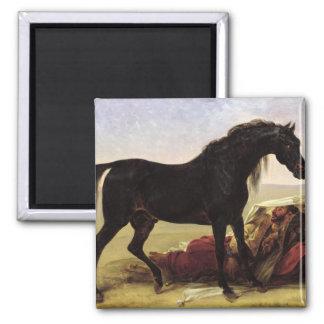 Un caballo árabe iman