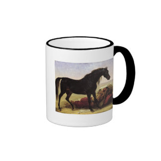 Un caballo árabe taza de dos colores