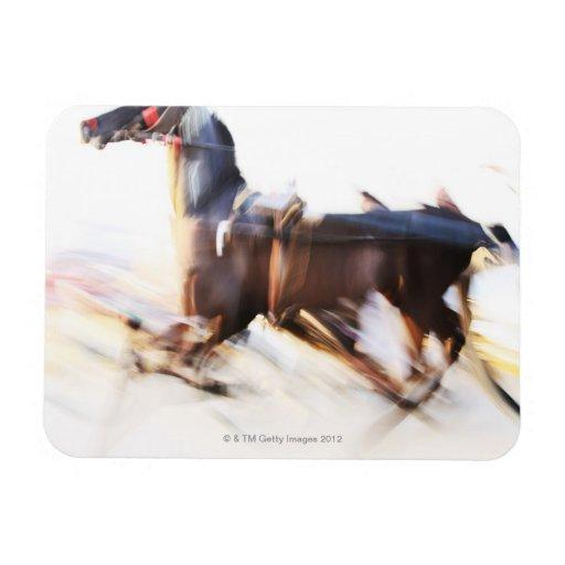 Un caballo corriente en una velocidad está compiti iman