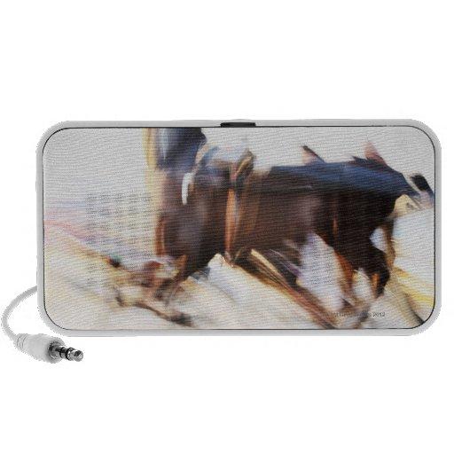 Un caballo corriente en una velocidad está compiti iPod altavoces