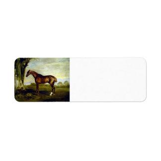 Un caballo de carreras de la castaña de George Stu Etiqueta De Remite