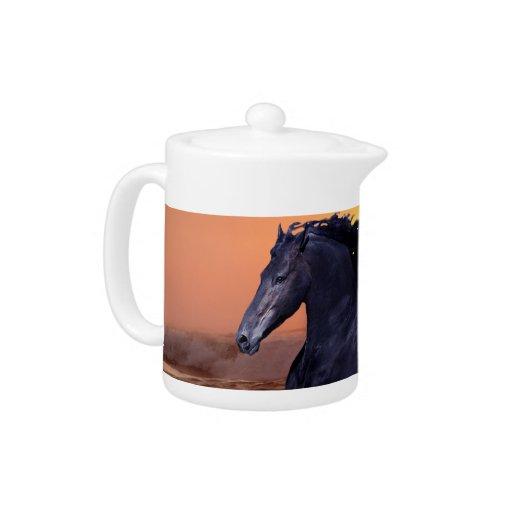 Un caballo del océano de la puesta del sol