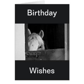 Un caballo en el cumpleaños de los establos desea  felicitaciones