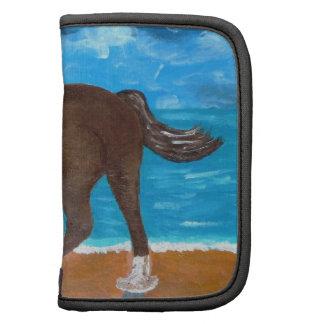 un caballo en la playa planificadores
