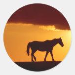Un caballo en la puesta del sol pegatina redonda
