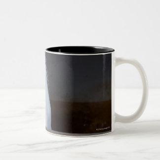 Un caballo (équidos) tazas de café