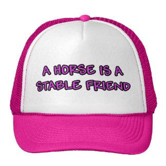 Un caballo es un amigo estable gorra