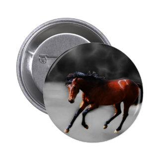 Un caballo llamó Riboking Pin