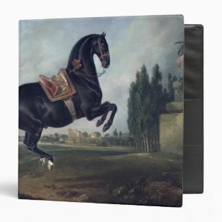 "Un caballo negro que realiza el Courbette Carpeta 1 1/2"""