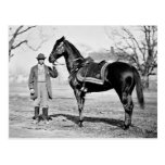 Un caballo nombrado Cincinnati, 1865 Postal