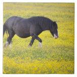 Un caballo que camina en un campo de flores amaril azulejos ceramicos