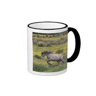Un caballo que corre en un campo de wildflowers am tazas de café
