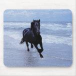 Un caballo salvaje y libre alfombrilla de ratón