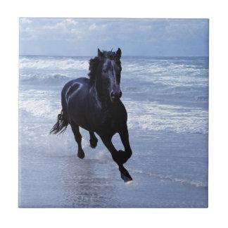 Un caballo salvaje y libre azulejo cuadrado pequeño