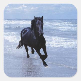 Un caballo salvaje y libre calcomania cuadradas