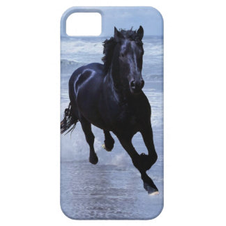 Un caballo salvaje y libre iPhone 5 funda