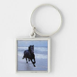 Un caballo salvaje y libre llavero cuadrado plateado