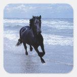 Un caballo salvaje y libre pegatina cuadrada