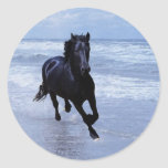Un caballo salvaje y libre pegatina redonda