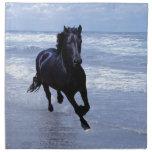 Un caballo salvaje y libre servilleta