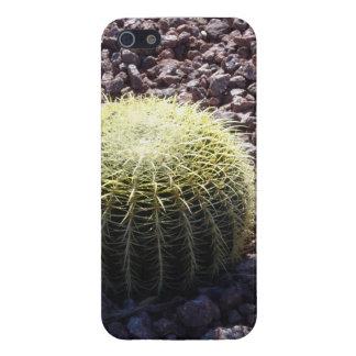 Un cactus perfecto iPhone 5 carcasas