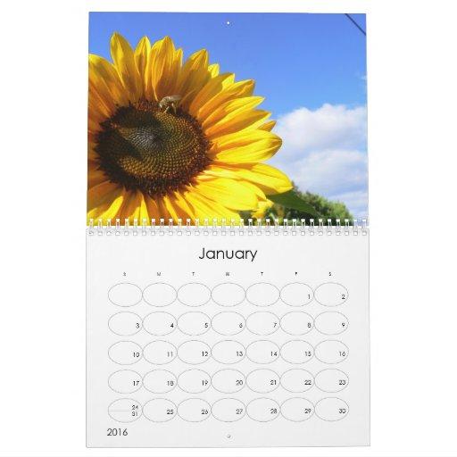 Un calendario 2009 del rey del girasol