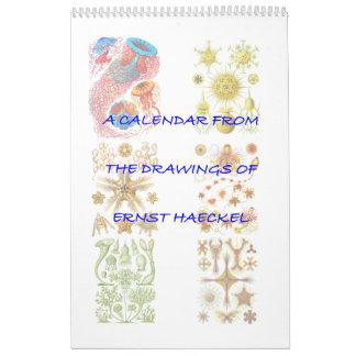 Un calendario de los dibujos de Ernst Haeckel.
