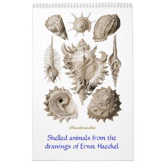 Un calendario de los dibujos de la cáscara de