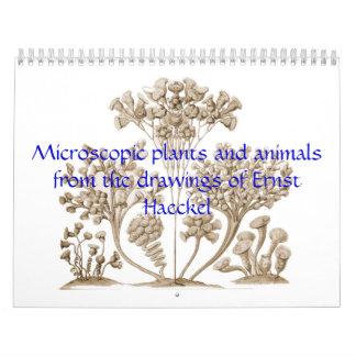 Un calendario de plantas y de animales