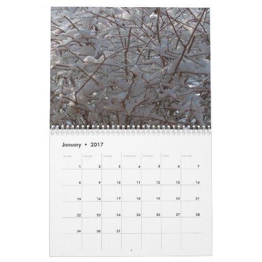 """Un calendario del año"" 2010 de Kansas"