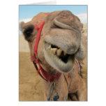 Un camello alegre tarjeton