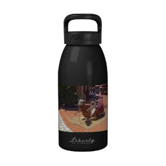 Un camello de Brown que coloca con la silla de Botella De Agua