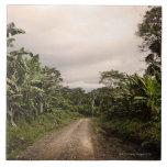 Un camino alejado de la selva azulejos