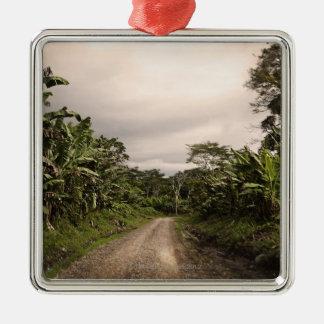Un camino alejado de la selva adorno de navidad