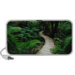 Un camino en el medio del bosque salvaje iPod altavoz