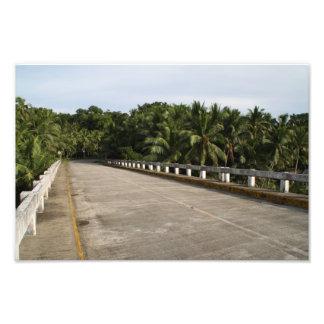 Un camino en Samar Impresiones Fotograficas