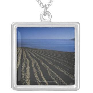 un campo arado cerca del mar colgante cuadrado