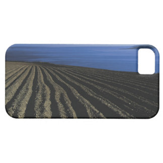 un campo arado cerca del mar iPhone 5 carcasas