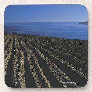 un campo arado cerca del mar posavasos