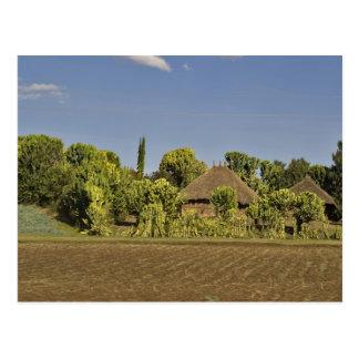 Un campo cultivado delante de casas de tejado tarjetas postales