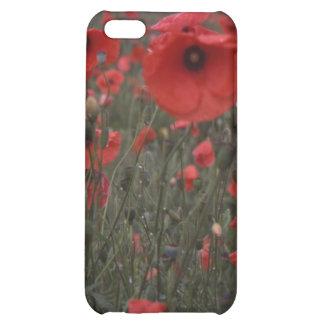 Un campo de las flores rojas vivas de la amapola